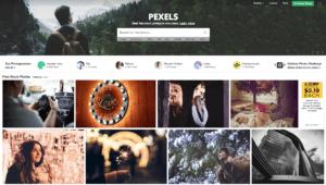 pexels free stock photos